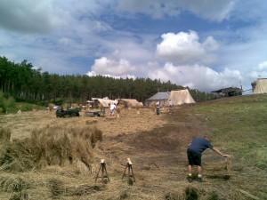 Creating a Hay Field Harvest Scene